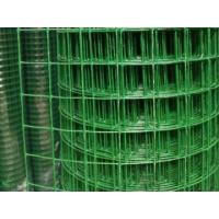 China PVC Coated Welded Wire Mesh Roll Hot Dipped Galvanized With Small Hole wholesale