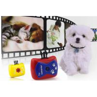 Quality Lovely Animals 720P Action Camera Video / Voice Reocorder for Dog or Cat Pet for sale