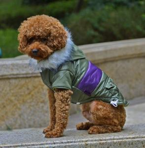 China Fashion dog clothes for winter jacket dog apparel wholesale