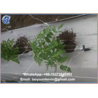 Buy cheap 100% new virgin material plastic bop trellis netting/plant support netting with from wholesalers