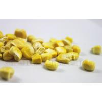 China Backpacking Food Freeze Dried Vegetables Bulk Corn Kernels Natural Freeze Dried Corns on sale