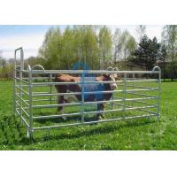 China Galvanised Portable Livestock Fence Panels , Steel Tube  Horse Fence Panels For Dairy Farm wholesale
