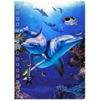 China New Design 3D PET Cover Lenticular Spiral A5 Notebook For School And Office Gifts wholesale