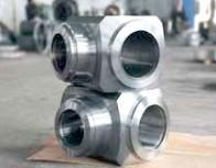 China Valve Body Forging, Welded Steel Pipe Fittings, Heavy Forged Valves AISI 4140 on sale