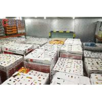China Low Temperature Big Cold Room Project Cheese Frozen Food Storage Cold Room Freezer wholesale