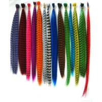 China Feather Hair Extension on sale