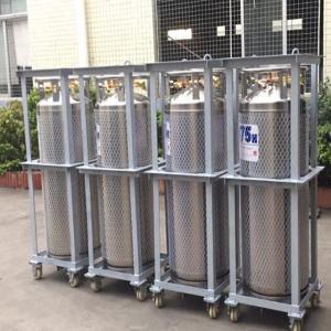 China 175L Cryogenic Liquid xygen/Nitrogen/Argon Cryogenic Cylinder Dewar Bottle TL175L wholesale