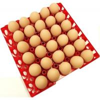 China Egg tray with 30 holes PP plastic material and different color QL401 wholesale