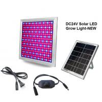 China DC24V Solar LED Grow Light 58W Dimming Red+Blue Full spectrum for Vegetable and Flower wholesale