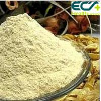 China Anti Disease Sugar Control Supplements Astragalus Extract Powder Freeze Drying wholesale
