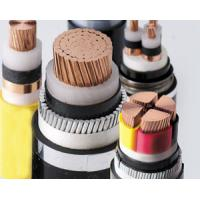 China Al/Cu Conductor XLPE Insulated Thin/Thick steel wire armored PE Sheathed Power Cable wholesale