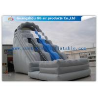 China Kids / Adults Double Inflatable Water Slide With Small Pool For Summer Games wholesale