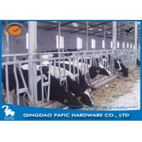 China Livestock Farm Locking Feed Barriers / Steel Galvanized Cattle Headlock Plan wholesale