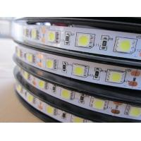 China LED Flexiable Strips SMD5050-60 IP20 DC12V white color 6000K 14.4W wholesale