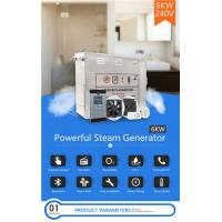 China Anti Rusting Steam Bath Equipment / 6kw Steam Generator 304 Stainless Steel Material wholesale