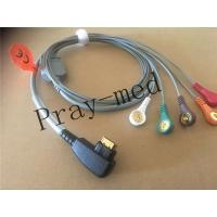 China 19 Pin Snap ECG Patient Cable 5 Lead DMS 300 System Holter Compatible Patient Safety wholesale