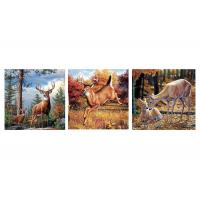 China Custom 16x16 Inches 3d Lenticular Photo Flowers & Animals Mounted Wall Art Print wholesale