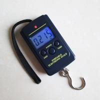 China ABS Plastic Digital Hanging Scale With Multifunctional Net Weighing Function wholesale