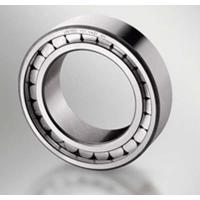 Quality High Precision Carb Toroidal Roller Bearing C4024V GCr15SiMn For Filter Plant Machinery for sale