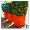 China fiberglass tree pots wholesale