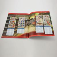 China Custom matt/glossy lamination Promotional Color Booklet Printing with glue binding for ads on sale