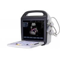 China 15'' LCD Screen Portable color Doppler ultrasound with stable image performance wholesale