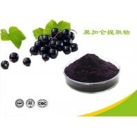 China Natural Water Soluble Freeze Dried Black Currant Extract Powder Anthocyanins wholesale