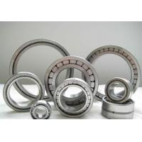 China SL183005 cylindrical roller bearing,25x47x16 mm no cage wholesale