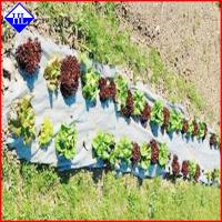 China Agriculture Nonwoven Garden Weed Control Sheet / Landscape Fabric Ground Cover on sale
