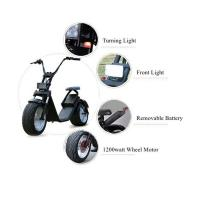 China EcoRider Electric Scooter, 1200w Electric Scooters  with removable battery wholesale