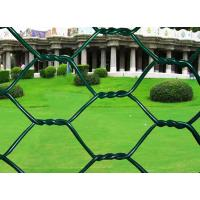 China PVC Coated Hexagonal Wire Mesh Chicken Wire Mesh Iron Wire Material For Farm wholesale