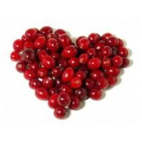 Buy cheap cranberry fruit extract free sample Anthocyanidins 25% UV --Vaccinium Macrocarpon L from wholesalers