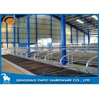 Quality Livestock Farm Locking Feed Barriers / Steel Galvanized Cattle Headlock Plan for sale