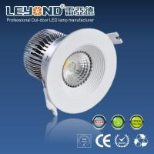 China 12-24V Led Kitchen Ceiling Lights CE ROHS Led Ceiling Lamp 12w wholesale