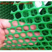 China 2016 hot sale plastic flat wire netting on sale