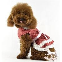 China Manufacture dog skirt, color spot, 5 colors at choice wholesale