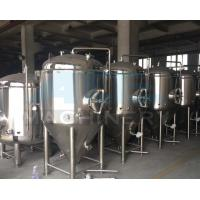China China Manufacturer Supply Beer Fermenter Provider Stirred Tank Fermenter Canned Beer Produce Equipment wholesale