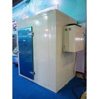 China Insulation Pu Foam Sandwich Panel Cold Storage Room White Color For Warehouse wholesale