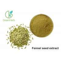 China High Pure Natural Plant Extract Powder Fennel Seed Extract Powder wholesale