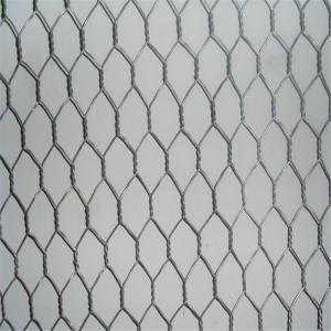China SS Rabbit / Chicken Hexagonal Wire Netting , Light Duty Garden Mesh Netting wholesale