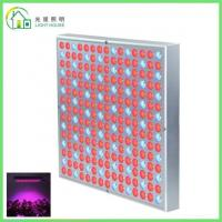 China Red LED Indoor Garden Lights / Energy Efficient LED Flowering Grow Lights , AC 85~265V wholesale