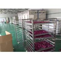 China Drying Flower Vegetable Dehydrator Machine , High Efficiency Industrial Fruit Dryer wholesale