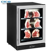 China Mini Meat Dry Aging Refrigerator / Dry Aged Beef Home Refrigerator on sale