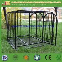 China Welded Wire Mesh Dog Cage wholesale