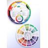 China Permanent Makeup Micro Pigment Color Wheel wholesale