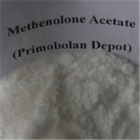 China Healthy Oral Primobolan Methenolone Acetate Steroids Bodybuilding Bulking Cycle  For Women wholesale