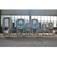 China Sanitary Stainless Steel Dimple Jacketed Beer Fermentation Tank (ACE-FJG-2C) wholesale