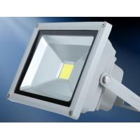 China COB led flood light 12V outdoor lighting white grey black housing CE Epistar Slim design wholesale