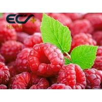 China Organic Superfood Skin Care Supplements Freeze Dried Raspberry Powder Rich Vitamins wholesale