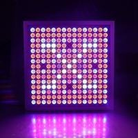 China Led Indoor Garden Lights For Flower , Grow Room Led Lights 60° Beam Angle wholesale